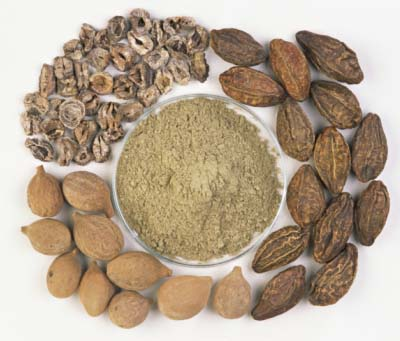 Triphala Fruits and Powder